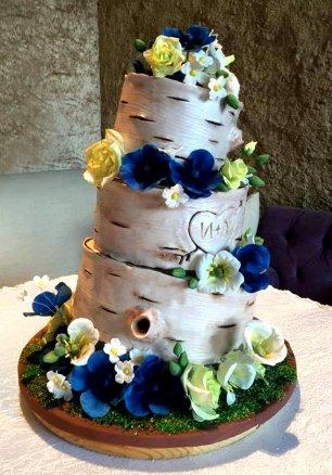 Фото торт берёзовое полено