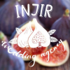 INJIR wedding agency