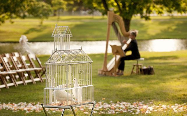 12 идей для незабываемой свадьбы, арфа на свадьбе