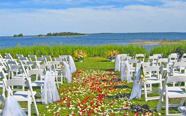 лепестки роз в свадебном декоре