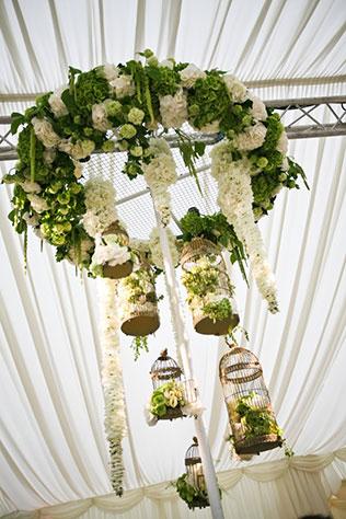 Купить цветы свисающие с потолка