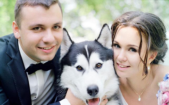 Жених и невеста, Свадебная фотосессия