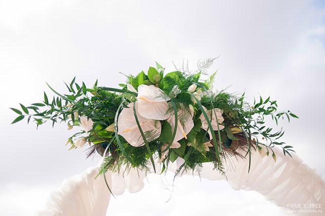 Павлинья свадьба украшение арки